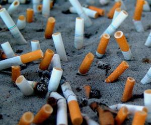 Курение наносит вред экологии
