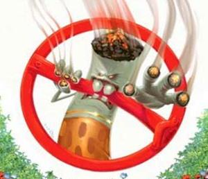 Организм после отказа от курения